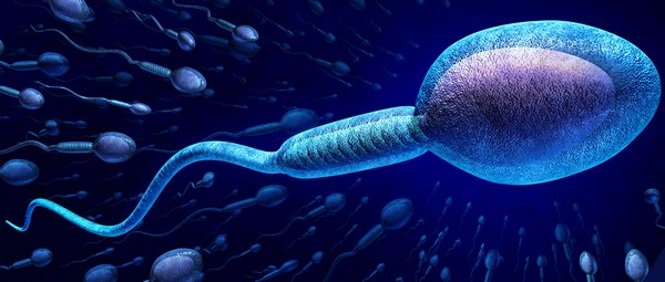 prueba de fertilidad masculina celular app