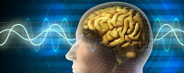 Neuralink cerebro computadora